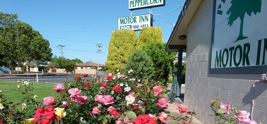 Peppercorn Motor Inn